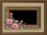 Frame (17).png