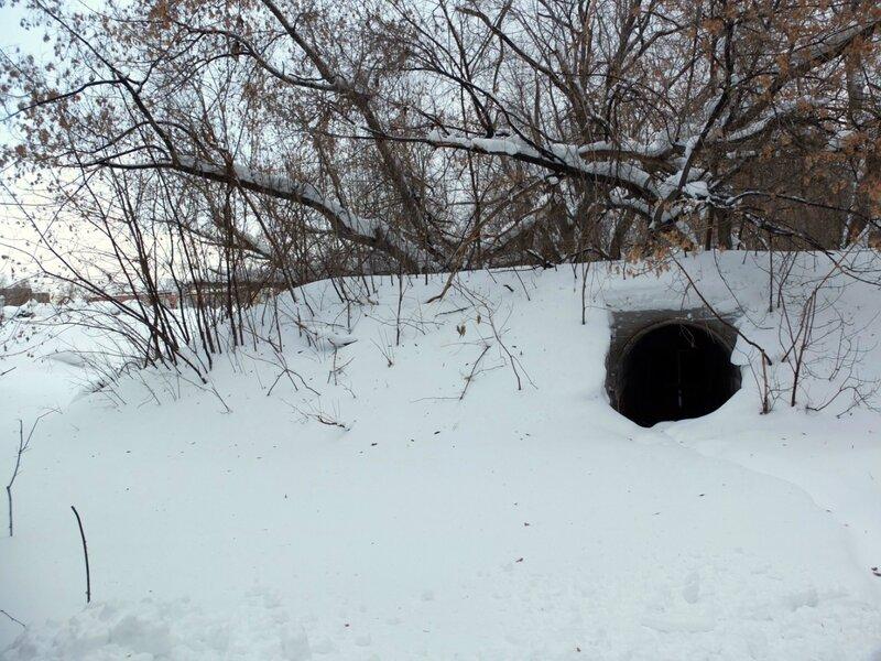 Зим с крыши 23 цеха 002.JPG