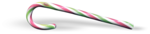 VC_Christmasrose_EL59_sh.PNG