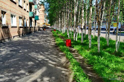 Фотография Инты №7711  Южная сторона Горького 6 21.06.2015_12:49