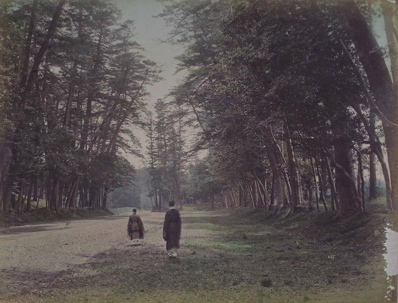 Двое мужчин в парке Уэно