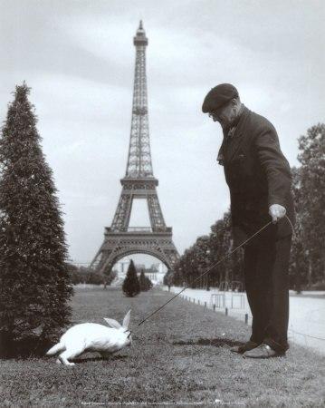 Кроль в Париже.jpg
