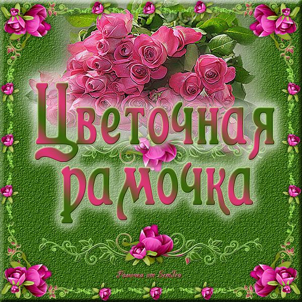 прев.png