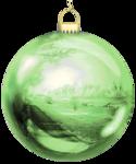 VC_Christmasrose_EL8.PNG
