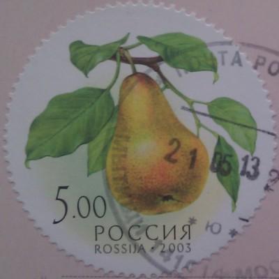 2003 Дары природы груша 5