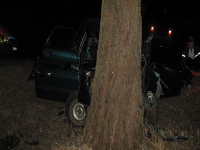 Жительница Брагина села за руль автомобиля после ссоры и погибла в аварии