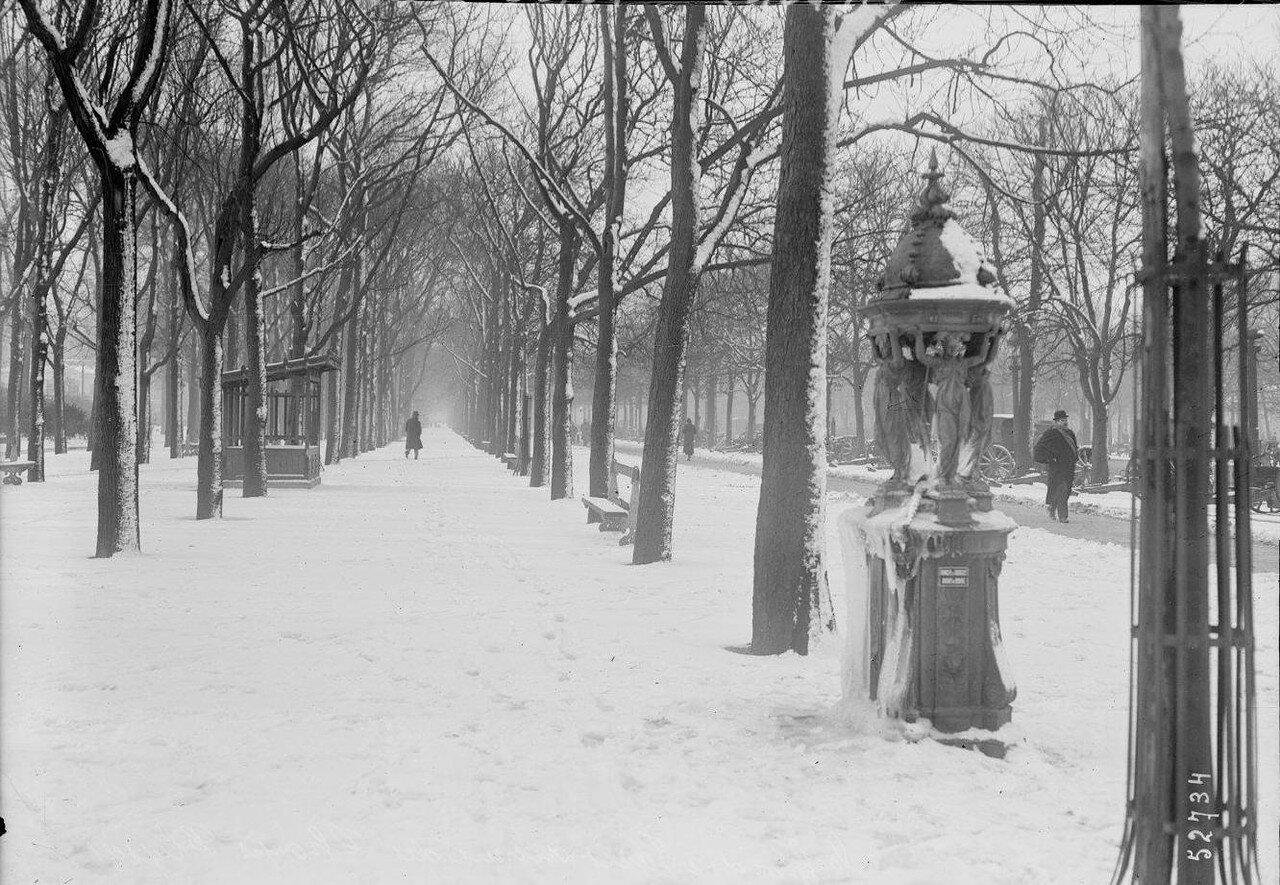1919, февраль, Елисейские поля
