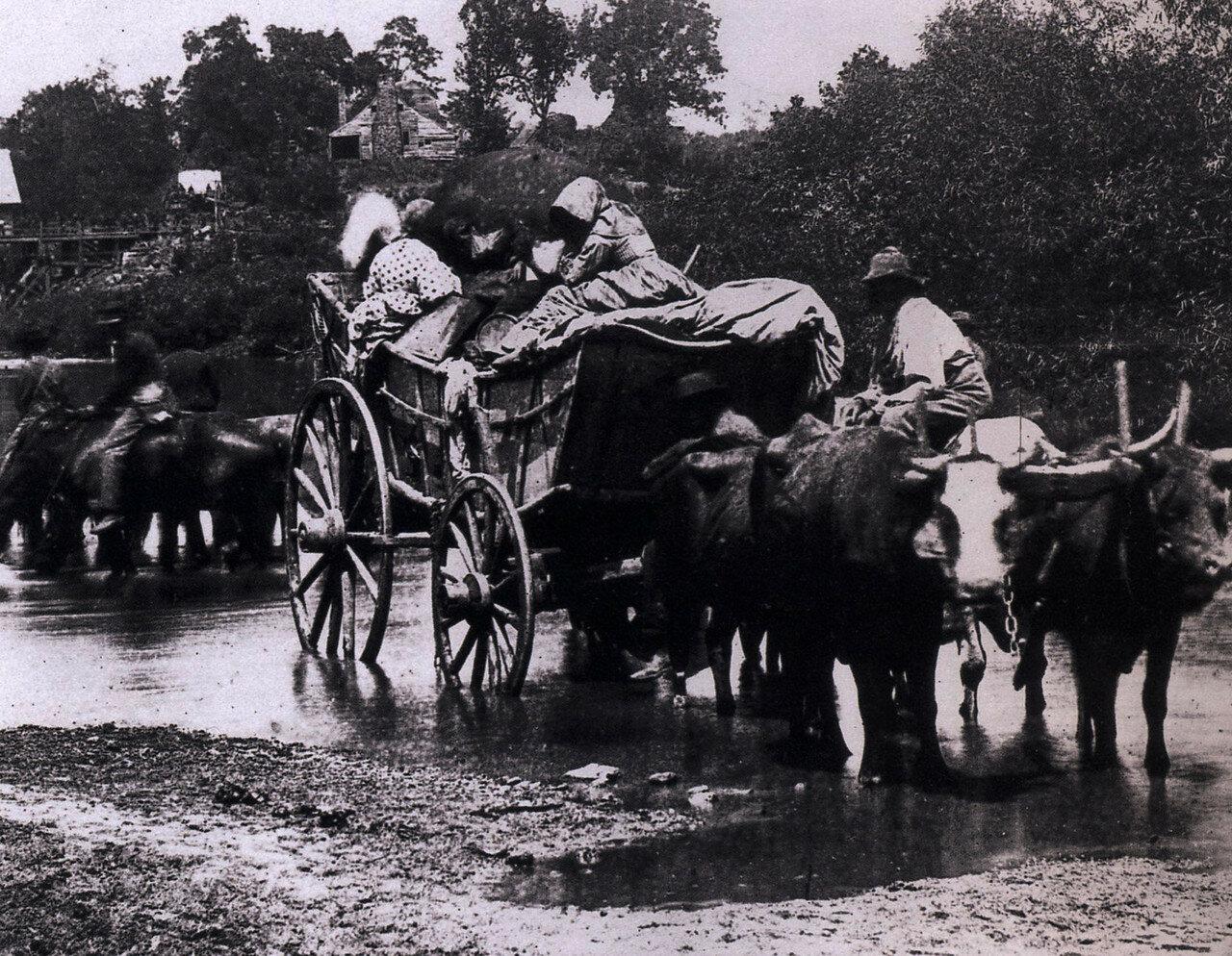 1862. Беглые негры пересекающие реку Раппаханнок при отступлении генерал-майора Джона Поупа