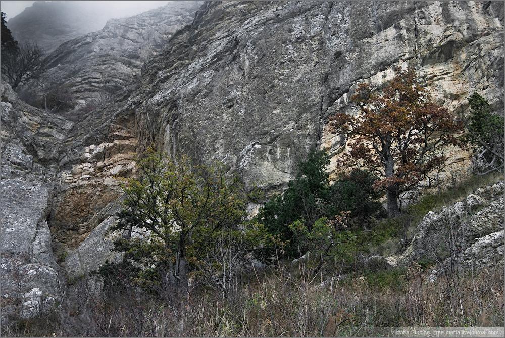 айя - балаклава