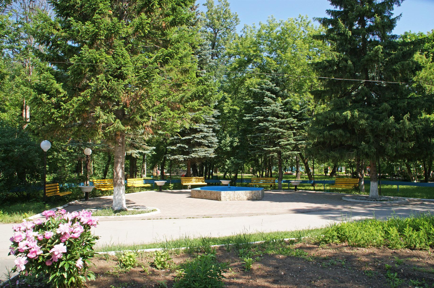 Уютное местечко в парке имени Пилютова (02.02.2015)