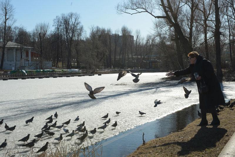 Весна в столице России начнется аномально теплой погодой