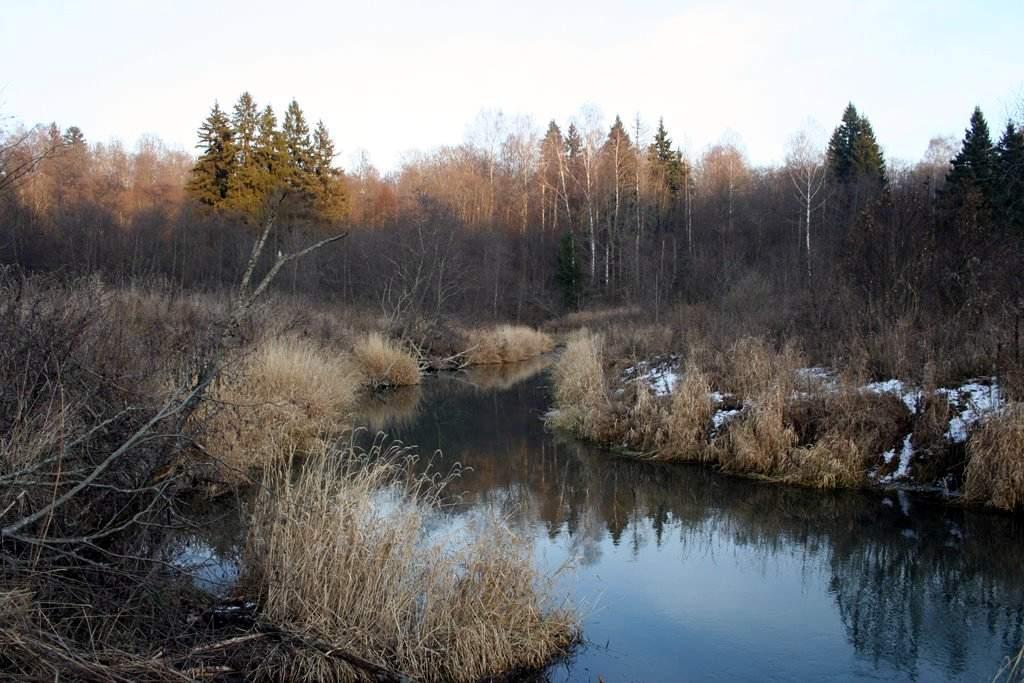 Река Волгуша