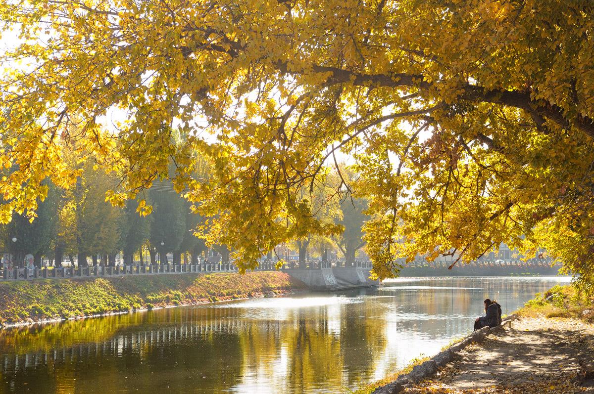 Осень в Харькове, 2014.