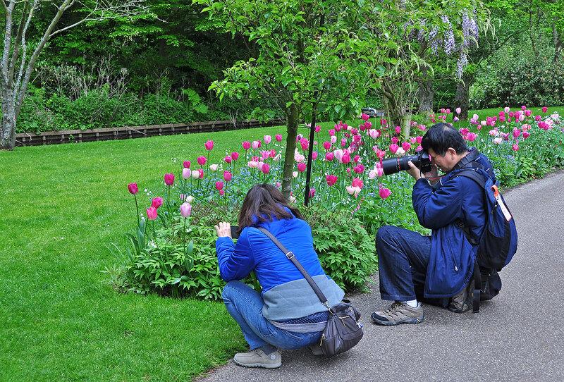 Парк - раздолье для фотографов