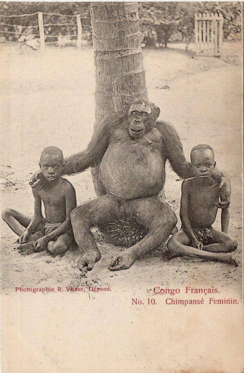Французское Конго