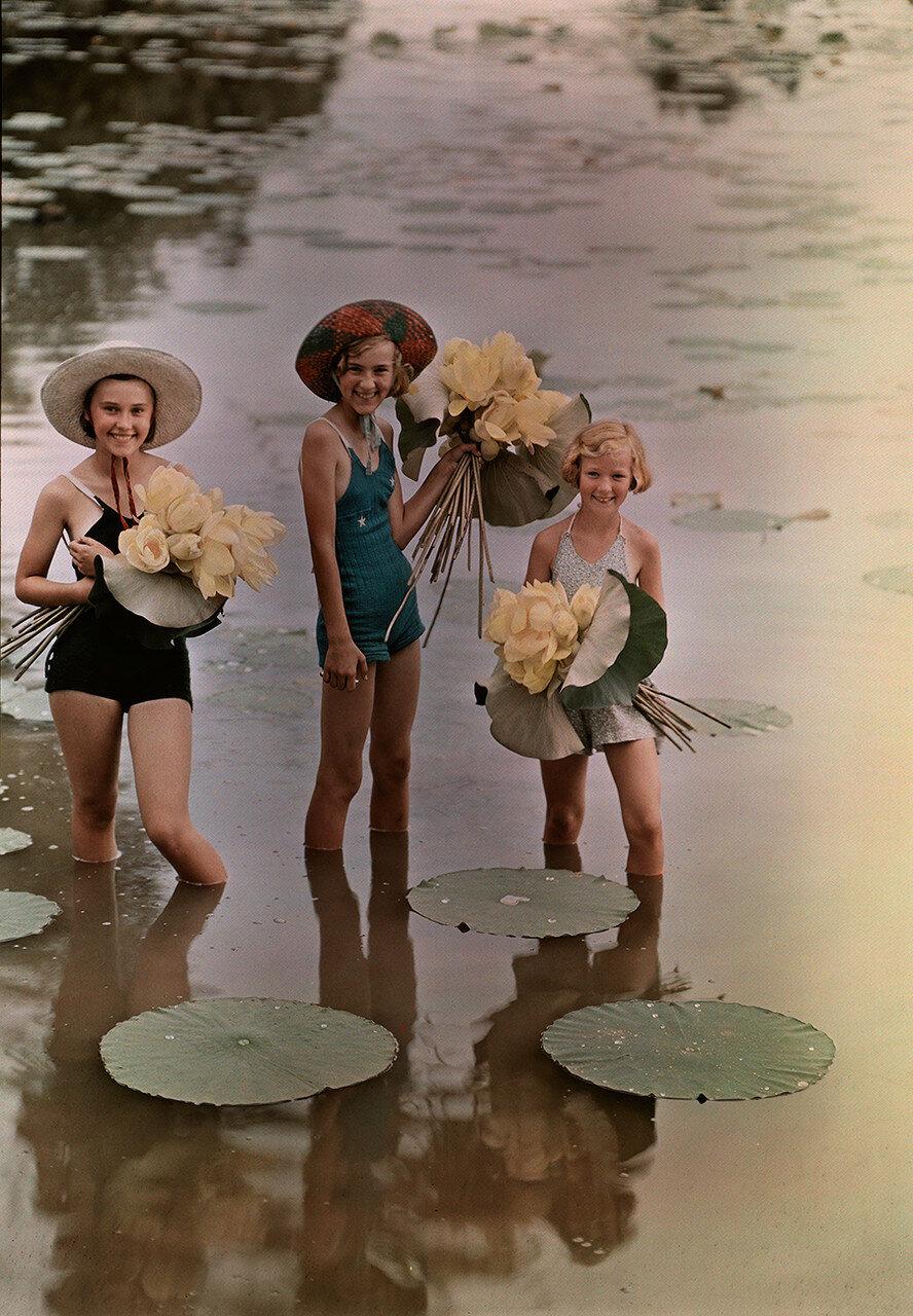 1938. США, Девочки, стоящие в воде с букетами лотоса. Амана, Айова