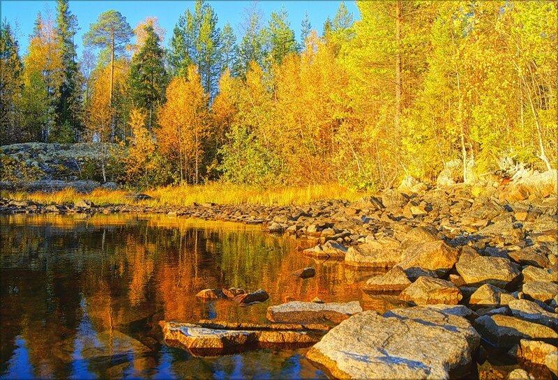 Артур Чартов. Осень