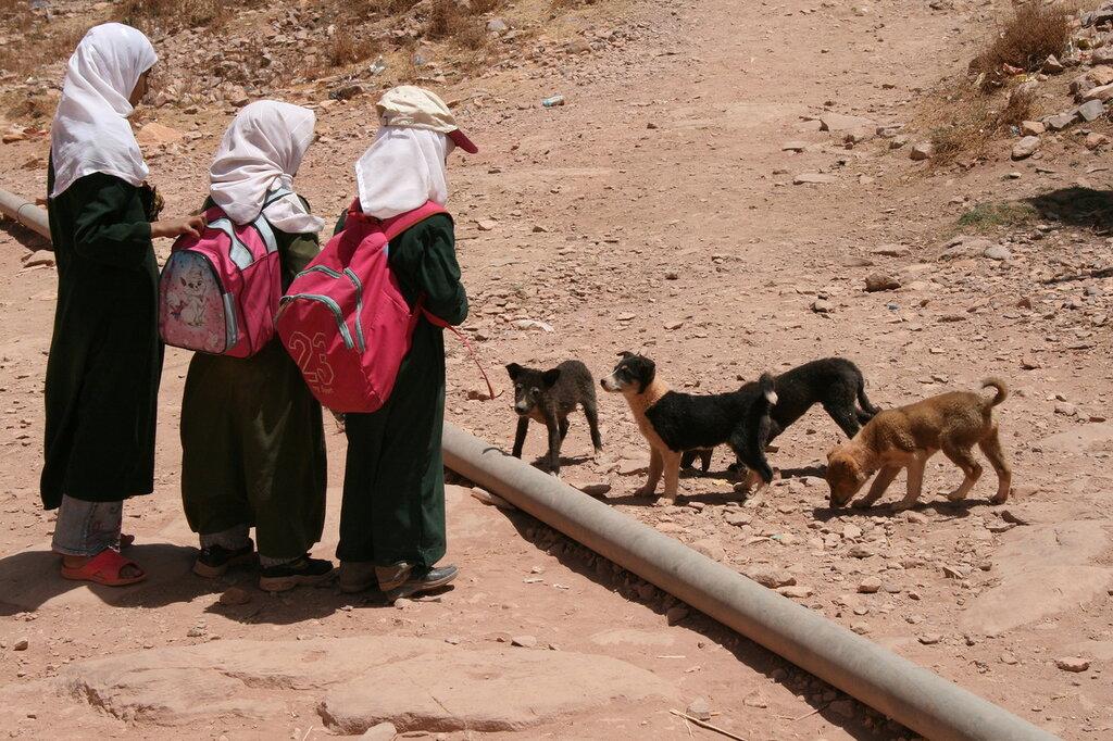 Йемен-2008 572.jpg