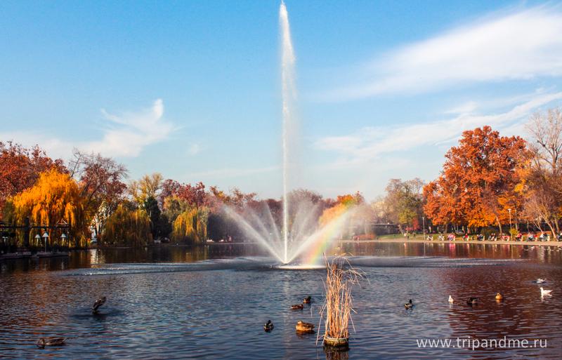 Осенний Будапешт 22.jpg