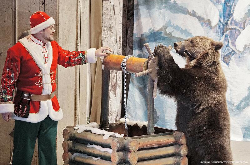 Уголок Дурова. Санта. 07.12.17.54..jpg