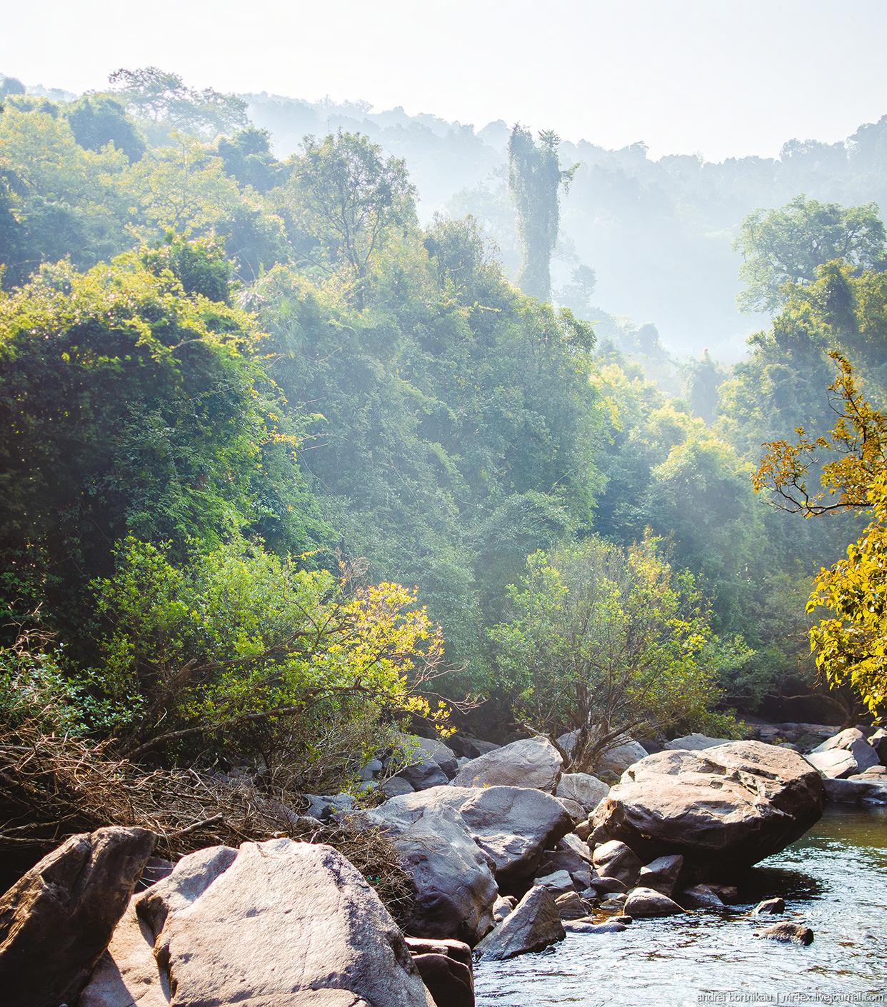 Джунгли в Гоа, река Дудхсагар