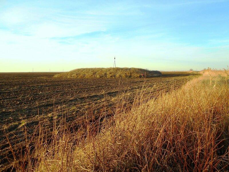 Перспектива поля с курганом и туристом ... DSCN2453.JPG