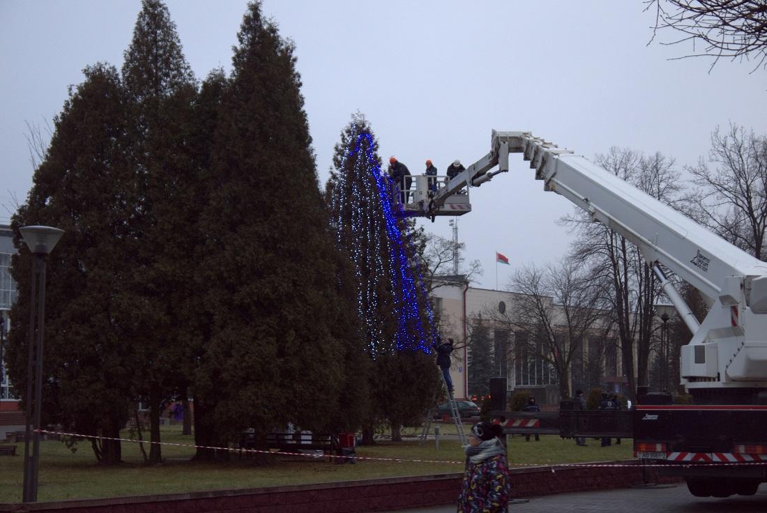 Украшают дерево в Новополоцке.