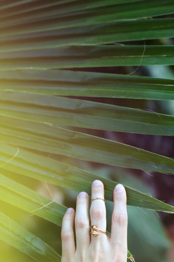 кольца манго