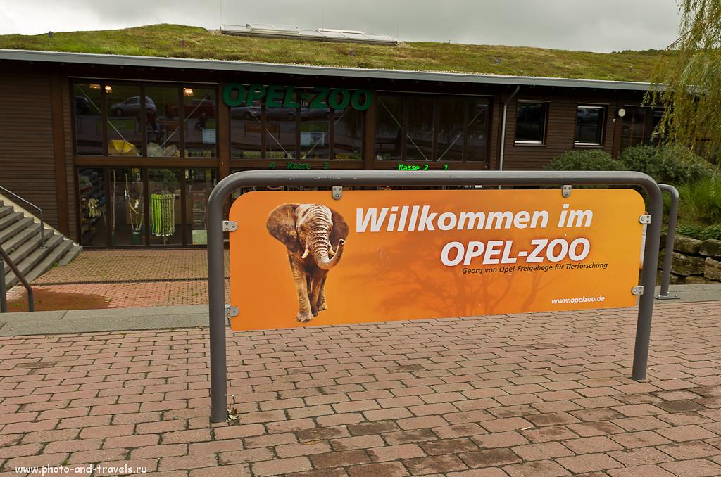 1. У входа в зоопарк Opel Zoo. Что посмотреть в окрестностях Франкфурта.