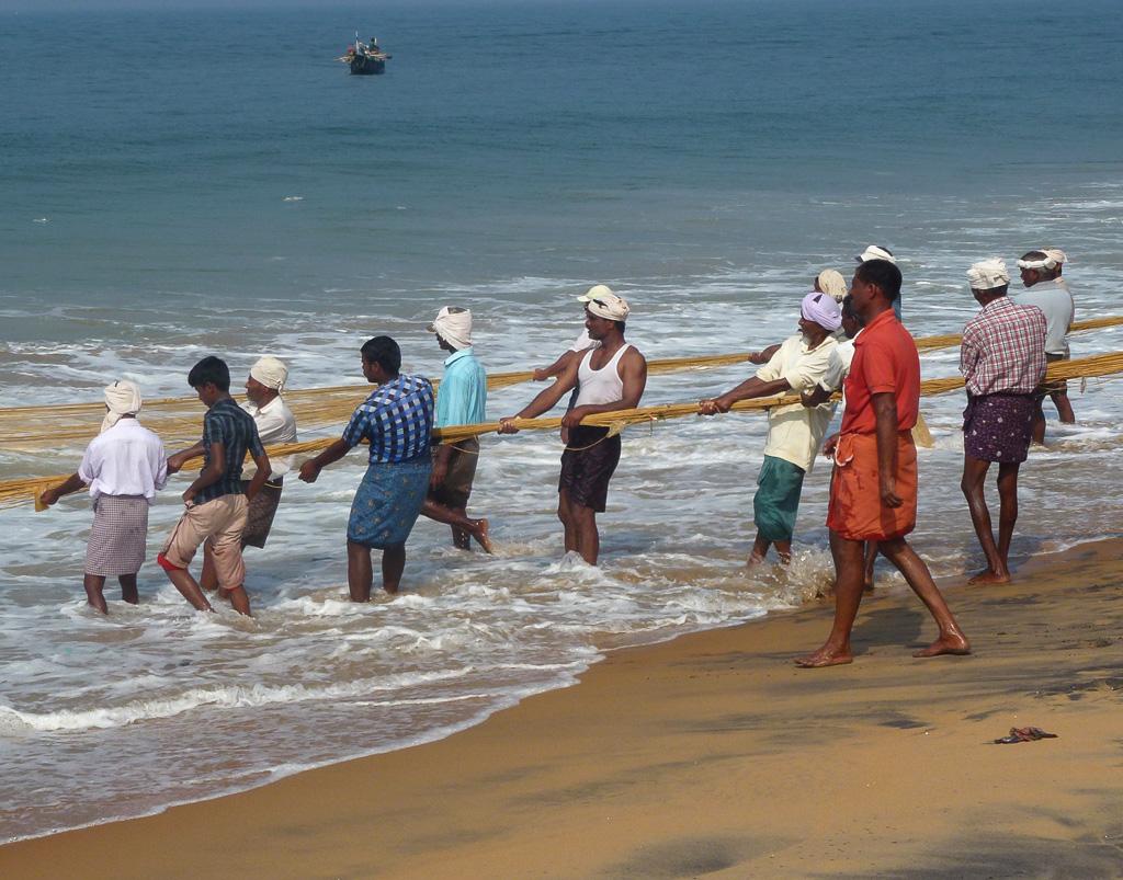 Фото 1. Отдых в Индии, поездка в Кералу. Рыбаки ловили рыбу
