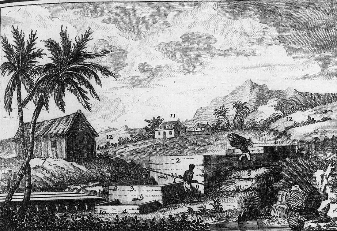 Рабы на производстве растительной краски индиго (Французская Вест-Индия, 1760-е годы)