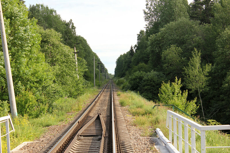 Перегон Осуга - Сычёвка, вид на Смоленскую область, у платформы 168 км