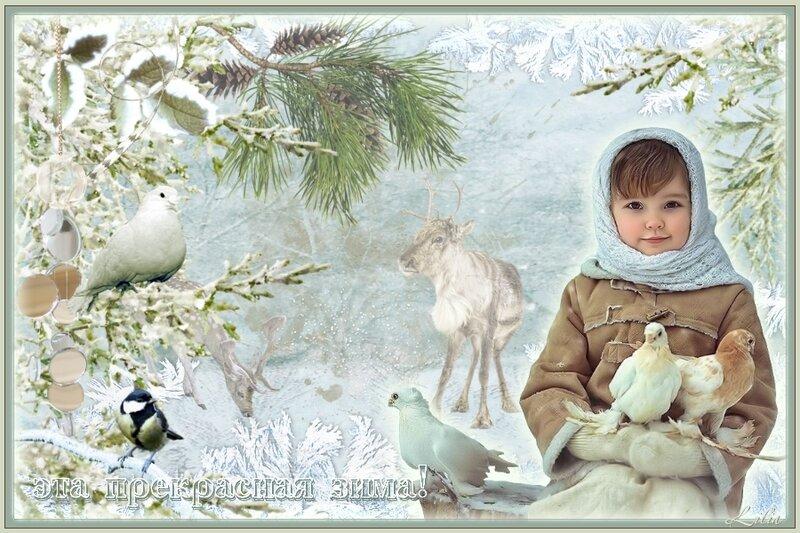 прекрасная зима.jpg