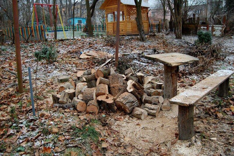 двор, дрова