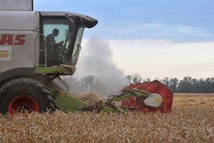 С 1 февраля будет введена пошлина на экспорт пшеницы