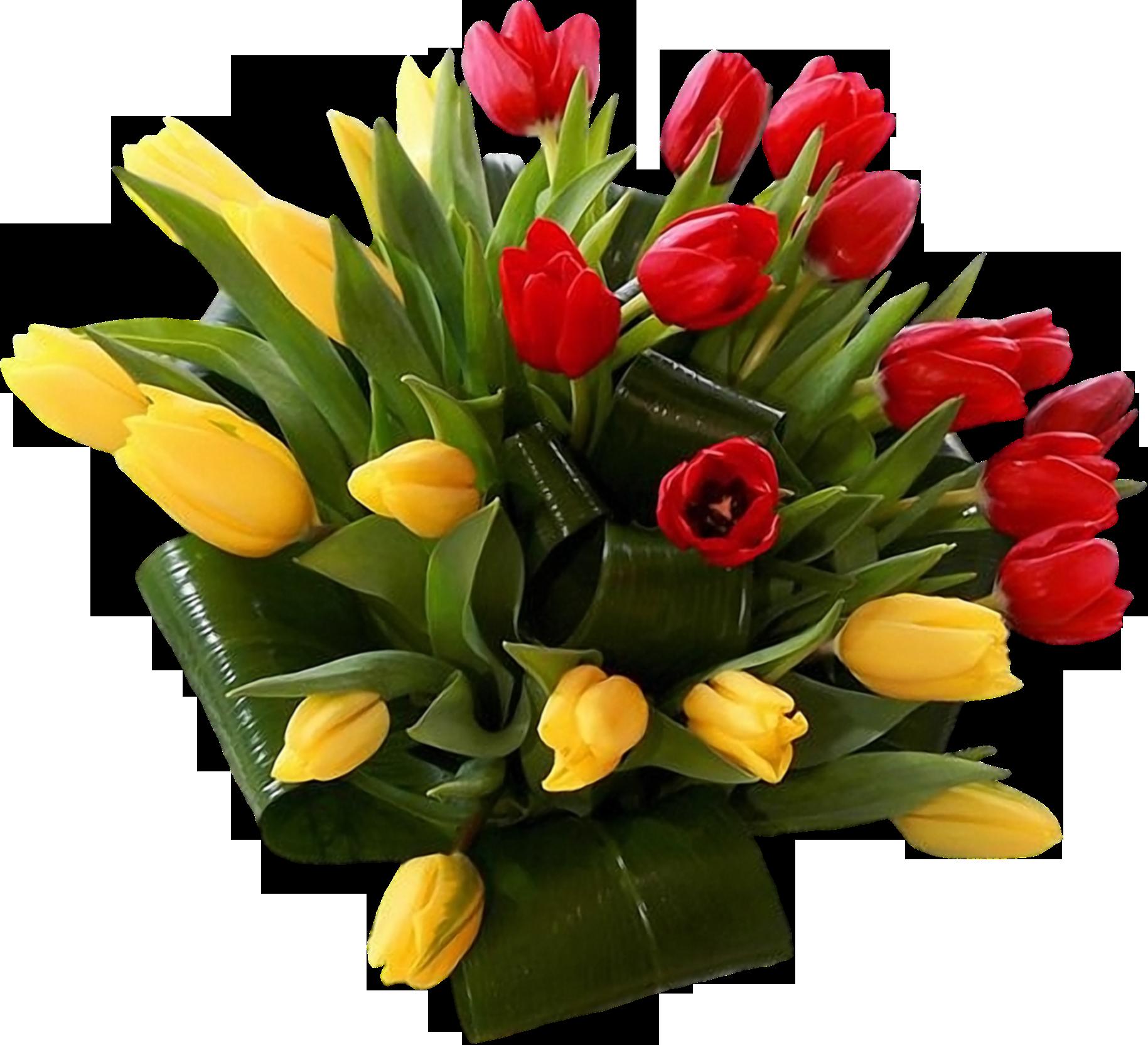 цветы фото на э