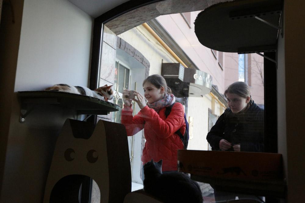 Sup-s-kotom-pervoe-koshache-kafe-v-Moskve-11-foto
