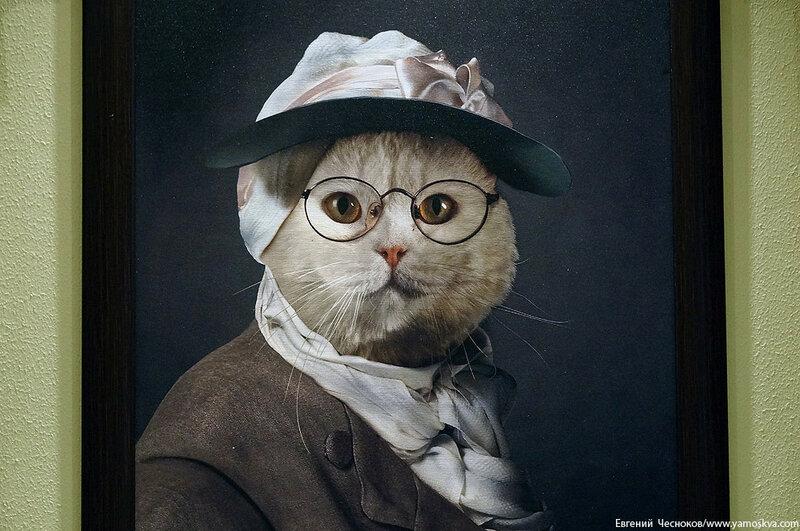 Осень. Театр кошек Куклачева. 15.10.15.15..jpg