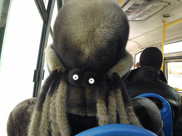 Задремал в автобусе. Проснулся - чуть не поседел.