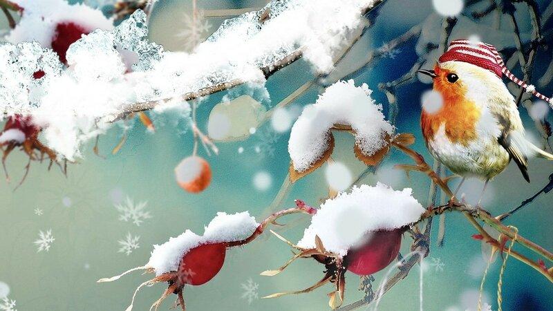картинки на экран рабочего стола зима № 482145 без смс