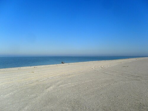 У моря ... SAM_4543.JPG