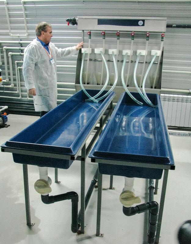 Инкубатор для подращивания личинок и молоди