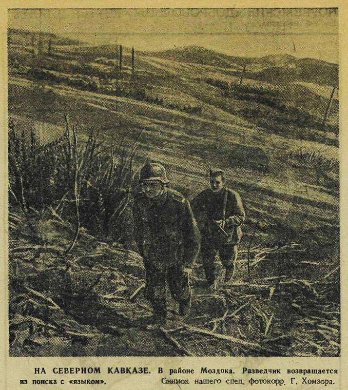 «Красная звезда», 1 октября 1942 года, битва за Кавказ, как русские немцев били, потери немцев на Восточном фронте, пленные немцы, пленные немцы в советской армии, немцы в советском плену