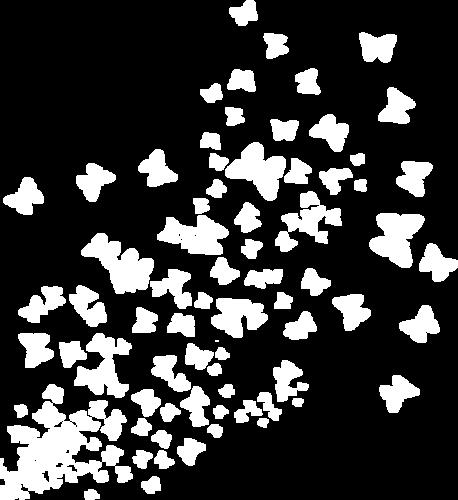 россыпи бабочки