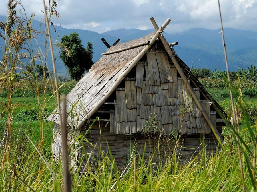 Полутрадиционный дом