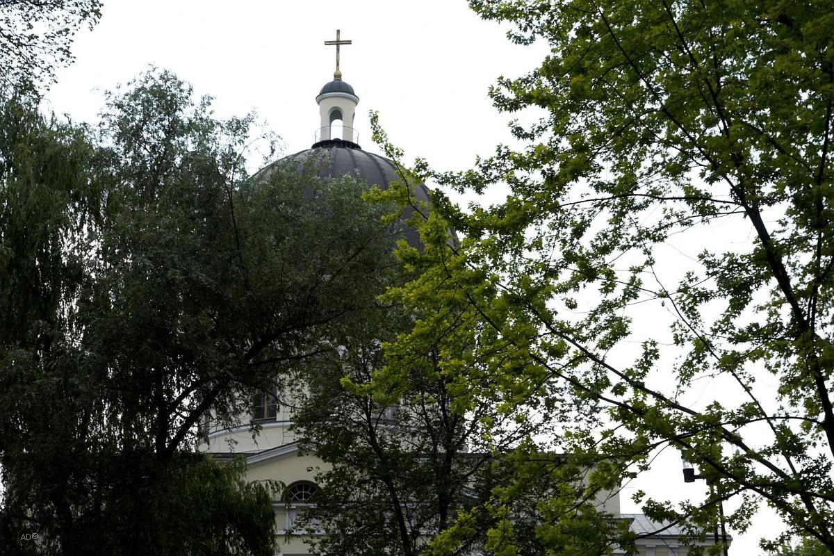 Купол Кафедрального собора Рождества Христова