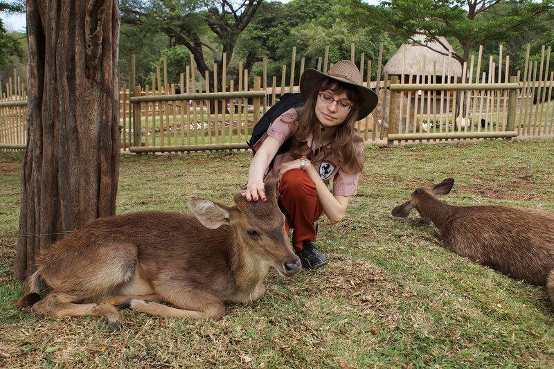 Ручные олени в парке Касела