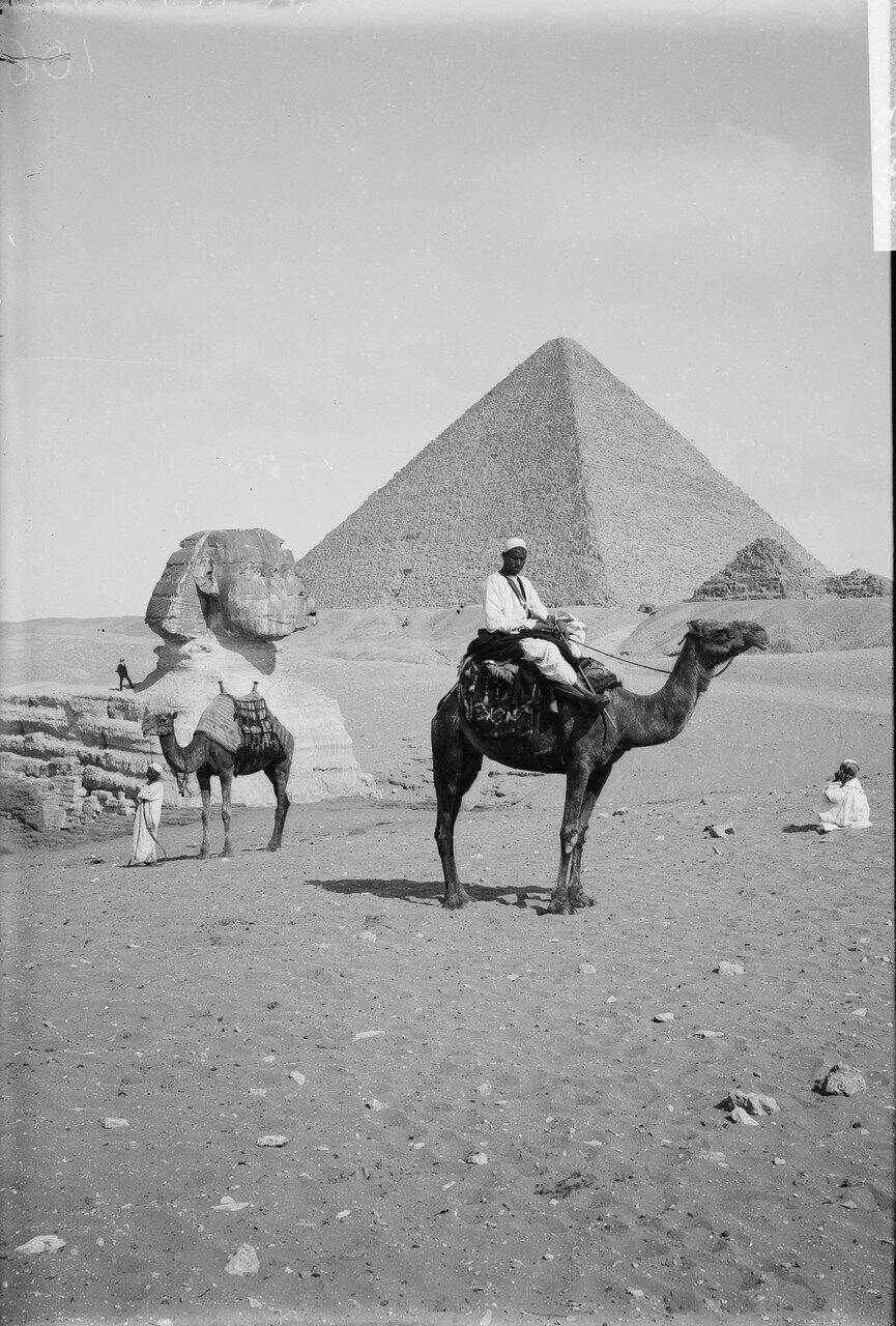 Гиза. Пирамида и Сфинкс. 1898