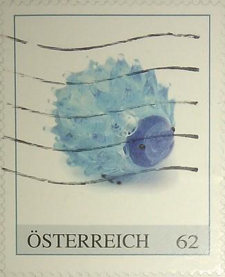 австрия голуб стекл ежик
