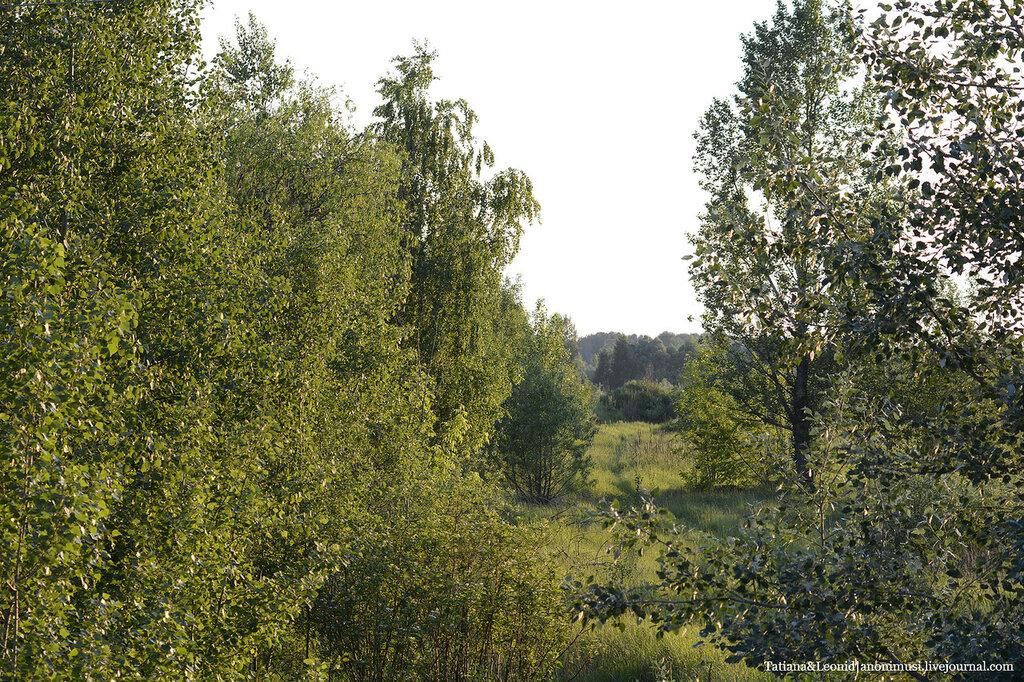 Шведская горка объективом Nikkor 80-200mm f/2.8d ed